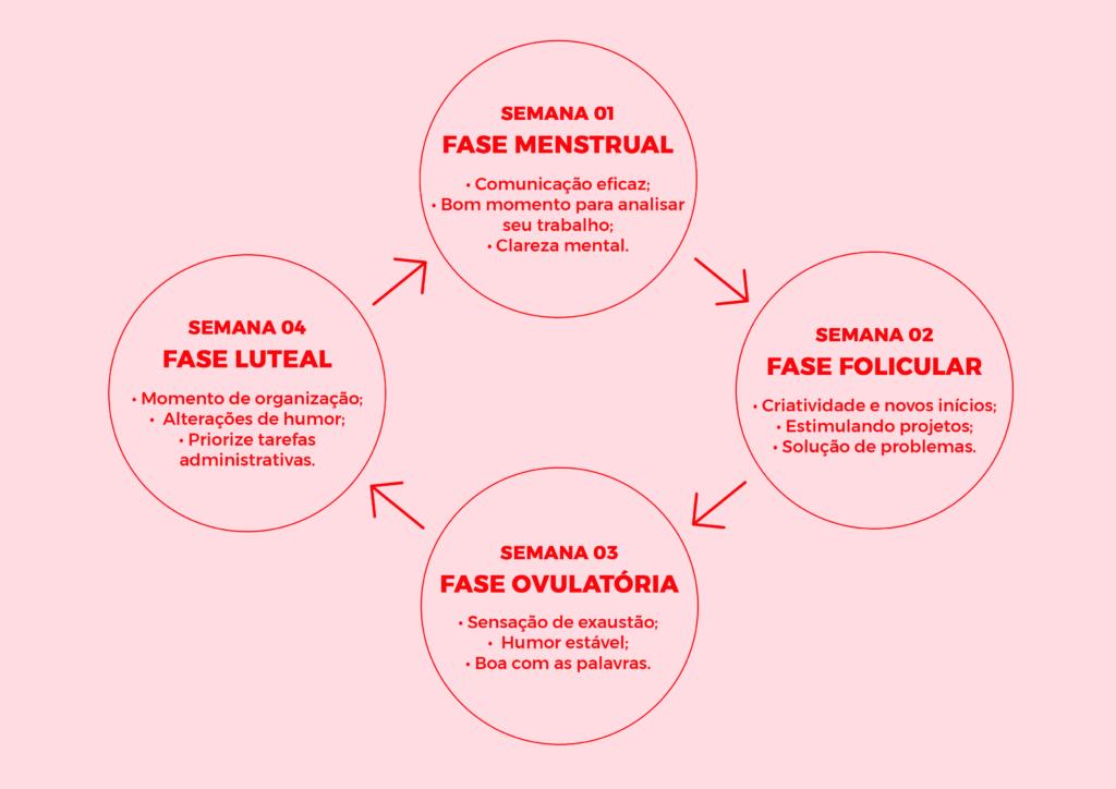 Imagem com as 4 fases do ciclo menstrual, a fase folicular é quando estamos mais propicias a criar