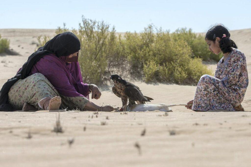Mulheres praticam falcoaria nos Emirados Árabes
